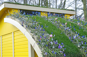 One method to get a green roof