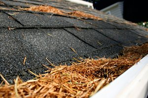 How To Buy Gutter Guards